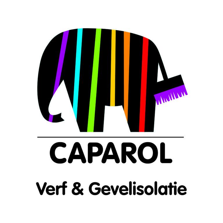 Caparol met baseline_NL